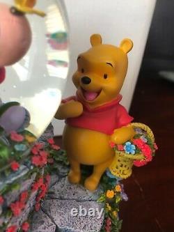 Disney Eeyore Garden Winnie the Pooh Snowglobe Musical with box