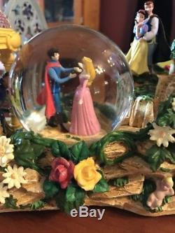 Disney Princesses Parade Light Up Musical Once Upon A Dream Snow Globe